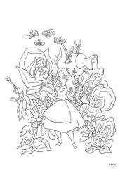 Alice v naravi
