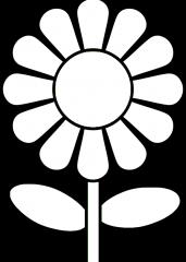 Pomladna marjetica