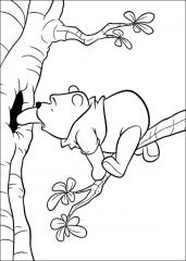 Medvedek Pu na veji.