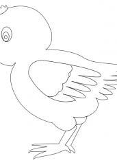Pobarvanka piščančka 2