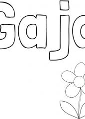 Pobarvanka imena Gaja