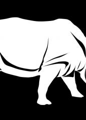Pobarvanka nosorog