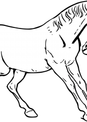 Poskočni konj pobarvanka