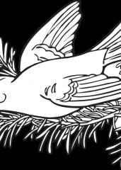 Pobarvanka ptice na smreki