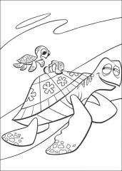 Ribica Nemo in želvi